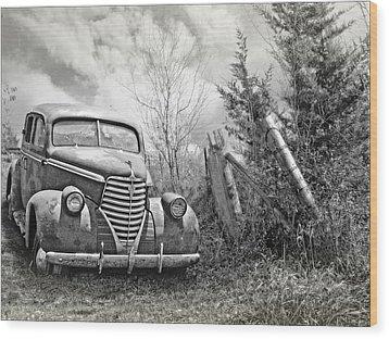 Part Of The Landscape Wood Print