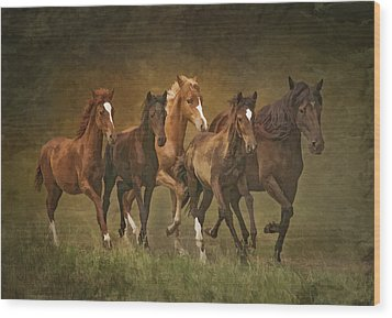 Wood Print featuring the photograph Paso Peruvians by Priscilla Burgers