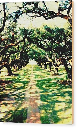 Wood Print featuring the photograph Passage Through The Shadows At Oak Alley by Michael Hoard