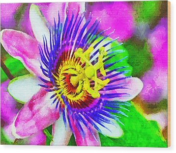 Passiflora Edulis Otherwise Known As Passion Flower Wood Print by Digital Photographic Arts
