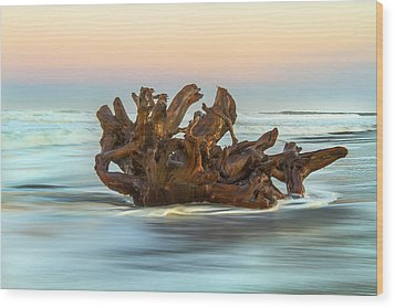 Passing Through Wood Print by Randy Wood