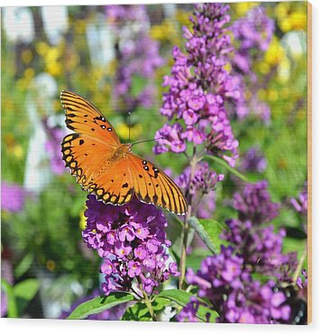 Passion Butterfly Wood Print by Deena Stoddard