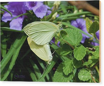 Passion Of The Butterflies Wood Print