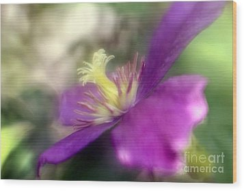 Wood Print featuring the photograph Passionate About You by Mary Lou Chmura