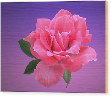 Wood Print featuring the photograph Passionate Pink by Joyce Dickens