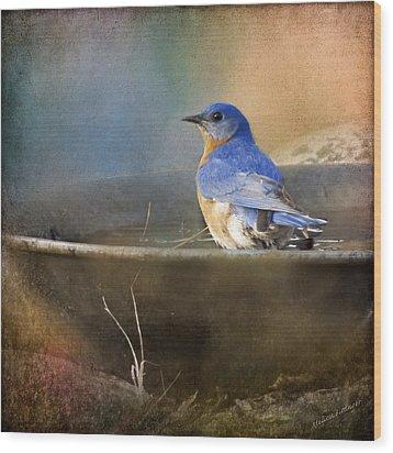 Pastel Eastern Bluebird Wood Print
