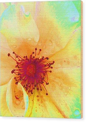 Pastel Garden Wood Print