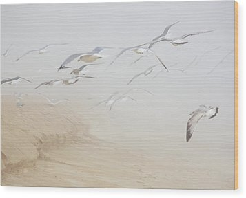 Pastel Gulls In Fog Wood Print
