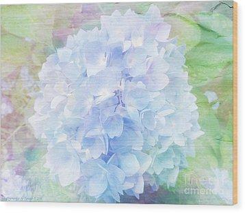 Pastel Hyacinth Wood Print by Gena Weiser