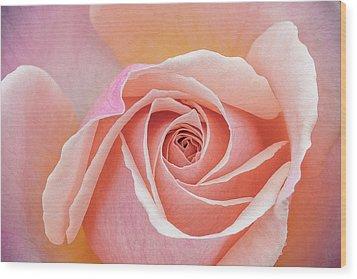 Pastel Passion Wood Print
