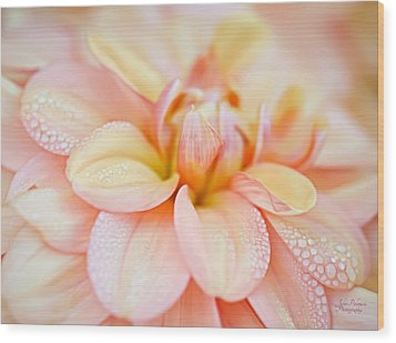 Pastel Petals And Drops Wood Print