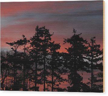 Wood Print featuring the photograph Pastel Silhouettes by Suzy Piatt