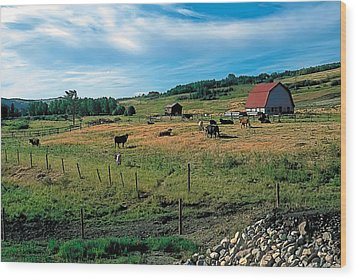 Pasture 2 Wood Print by Terry Reynoldson