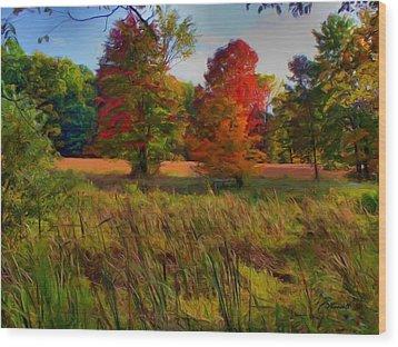 Pasture Gone Fallow Wood Print