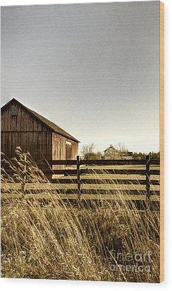 Pasture Wood Print by Margie Hurwich