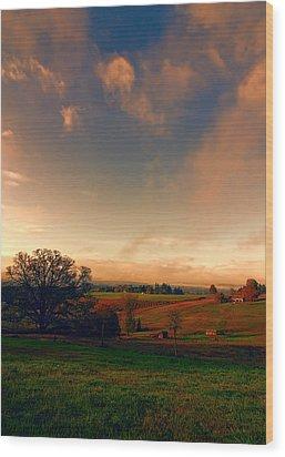 Pastureland Wood Print by Don Schwartz