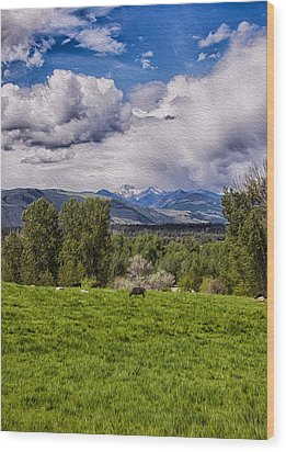 Pastures And Clouds  Wood Print by Omaste Witkowski