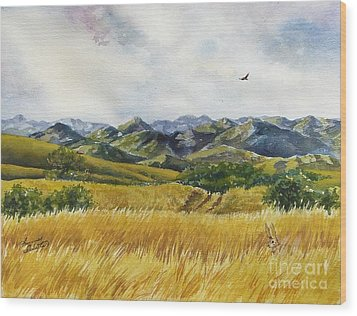 Patagonia Just Down The Valley Wood Print by Summer Celeste