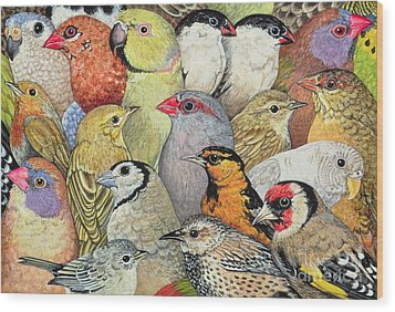 Patchwork Birds Wood Print