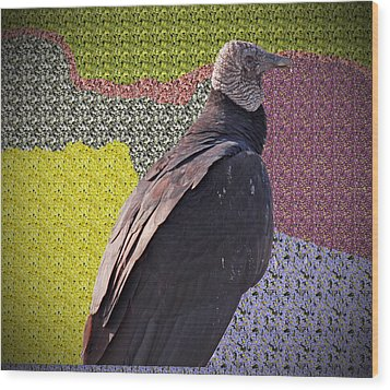 Patchwork Buzzard Wood Print by Audrey Robillard