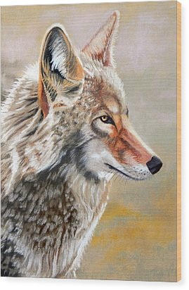 Patchwork Coyote Wood Print by Tanya Provines