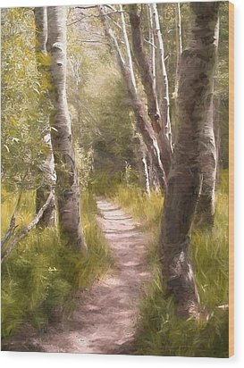 Wood Print featuring the photograph Path 1 by Pamela Cooper
