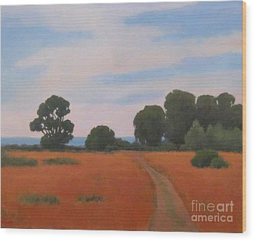 Path At Carpinteria Bluffs Wood Print by Jennifer Boswell