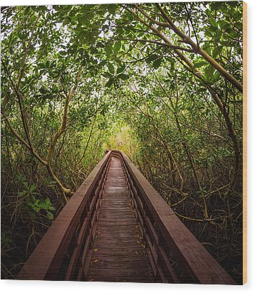 Path Wood Print by Carl Engman