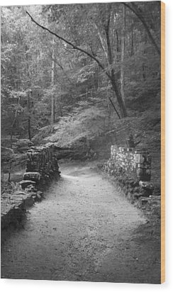 Path In Black And White Wood Print