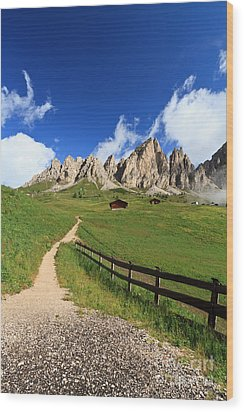 Wood Print featuring the photograph path in Gardena pass by Antonio Scarpi