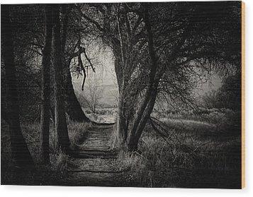 Path- Kern River Preserve Wood Print