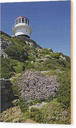 Path Leading To Lighthouse At Cape Point Wood Print by Sami Sarkis