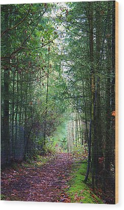 Path Of Adventure Wood Print by Bruce Bley