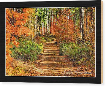 Wood Print featuring the photograph Path Of Life by Michaela Preston