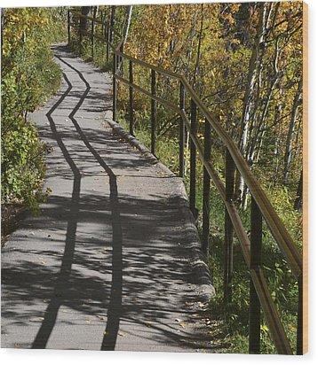 Path Shadow Wood Print