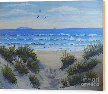 Path Through The Sand Dunes Wood Print by Pamela  Meredith