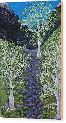Path Through The White Oaks Wood Print