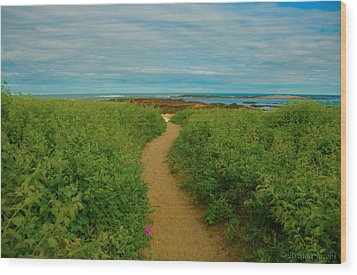 Wood Print featuring the photograph Path To Blue by Brenda Jacobs
