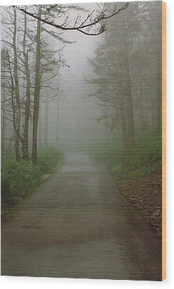 Path To Clingmans Dome Wood Print
