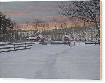 Path To The Barn Wood Print by Fran J Scott