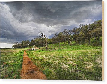 Path To The Clouds Wood Print