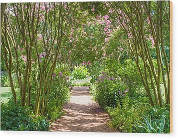Path To The Garden Wood Print