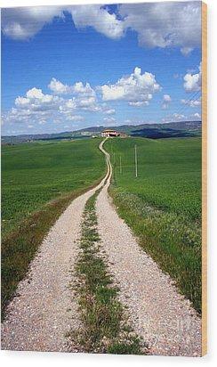 Path To The Horizon Wood Print by Arie Arik Chen