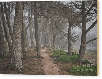 Pathway Wood Print by Alice Cahill