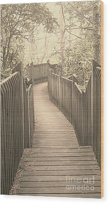 Pathway Wood Print by Melissa Petrey