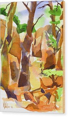 Pathway Through Elephant Rocks 1b Wood Print by Kip DeVore