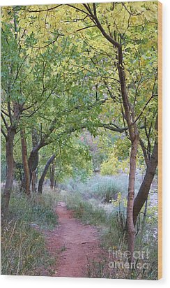 Wood Print featuring the photograph Pathway To Heaven by Mary Lou Chmura