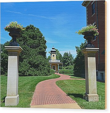 Pathway To The Observatory Wood Print by Luther Fine Art