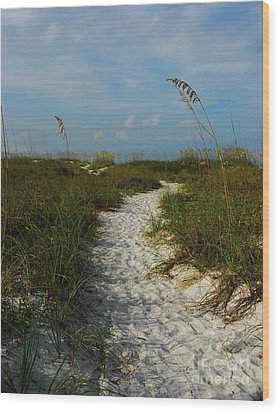Pathway To The Sea Wood Print by Mel Steinhauer