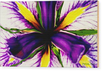 Patricia Bunk's Iris  Wood Print by Patricia Bunk
